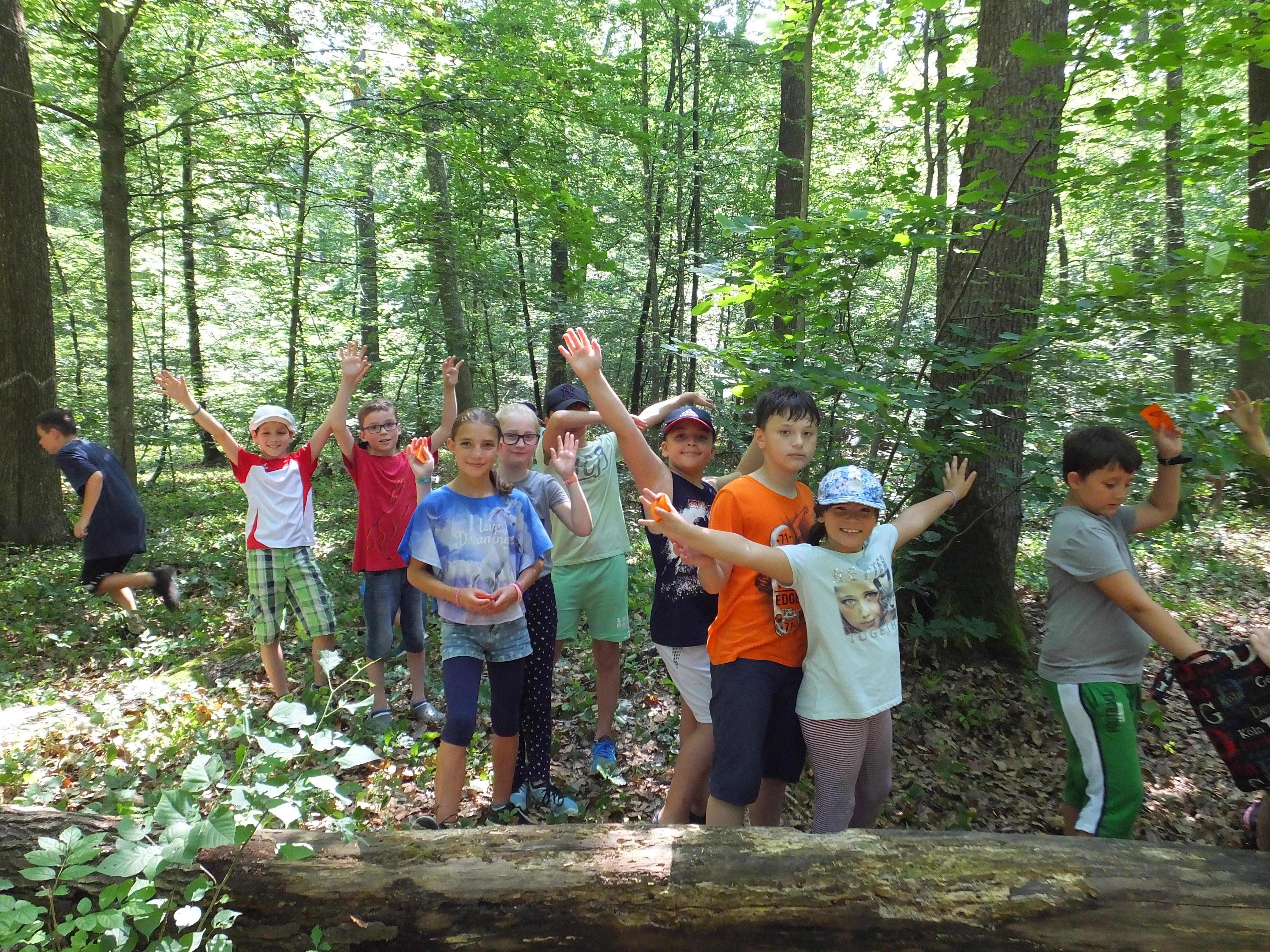 Zootiere ausgebrochen! Grundschüler fangen sie im Wald wieder ein